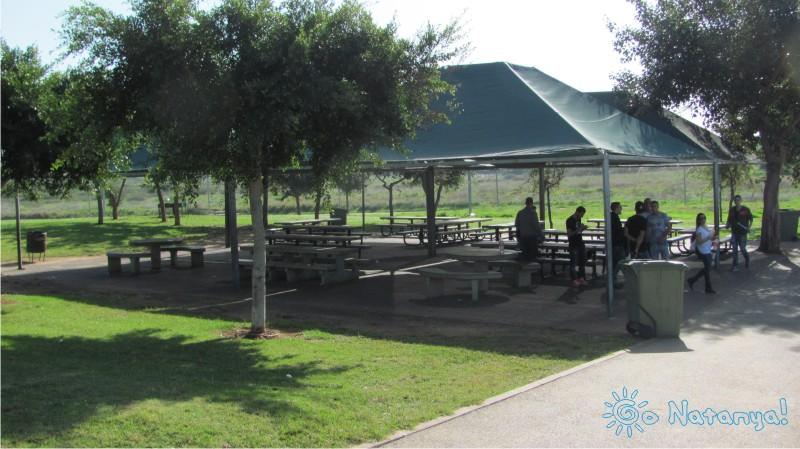 """Парк «Шлулит ха-Хорев» в Натании: часть вторая """"культура"""""""