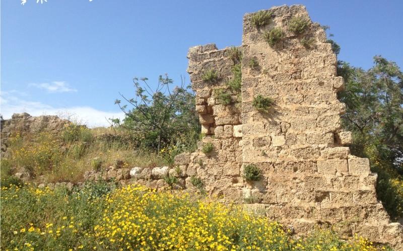 Замок Роджера Ломбардского в Нетании