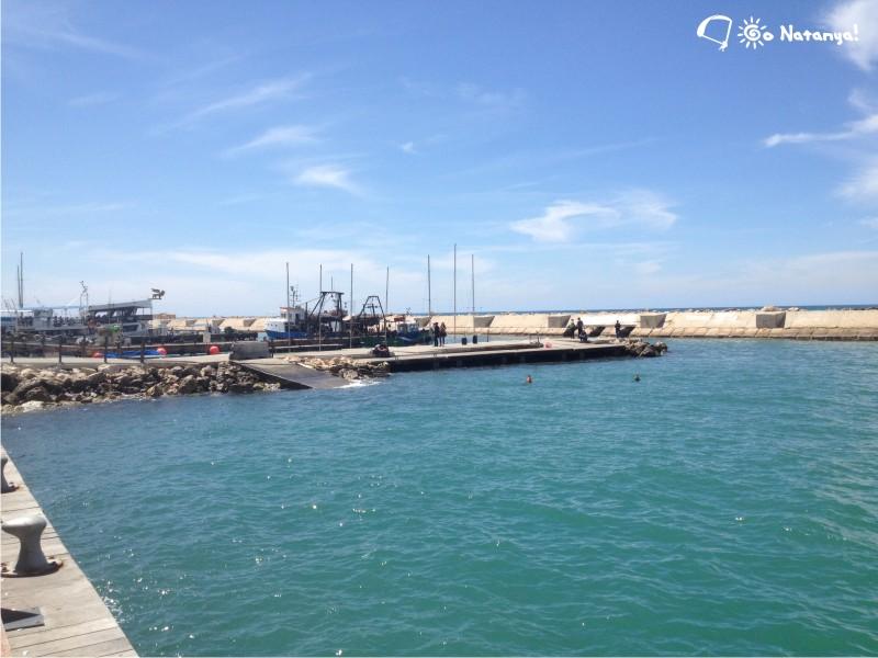 Порт Яффы