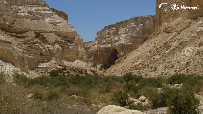 """Невероятные красоты национального парка """"Эйн-Авдат"""""""