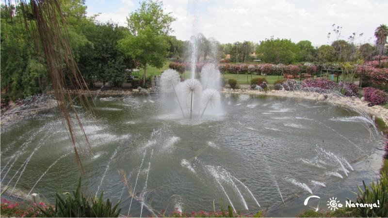 """Волшебный мир парка """"Утопия"""", отзывы об экскурсии и посещении"""