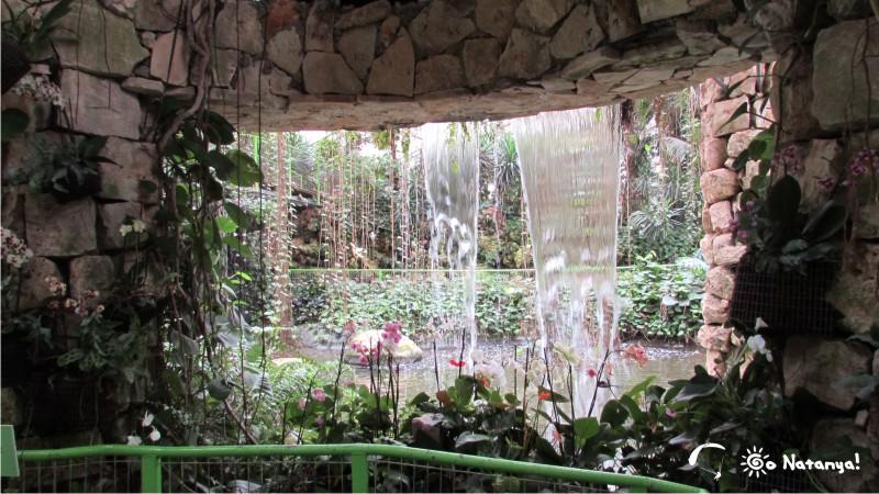 """Волшебный мир парка """"Утопия"""", отзывы о посещении парка"""